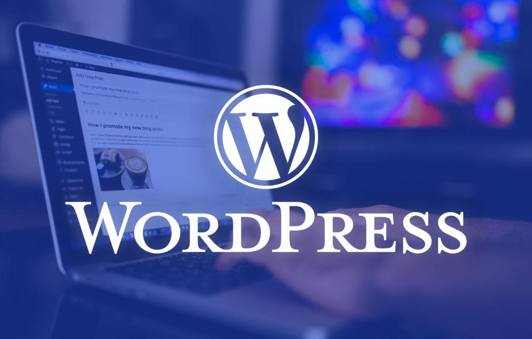 cheap wordpress theme